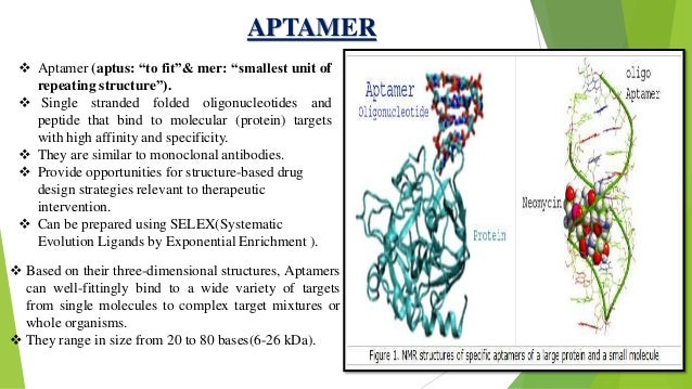 molecular probes and their application