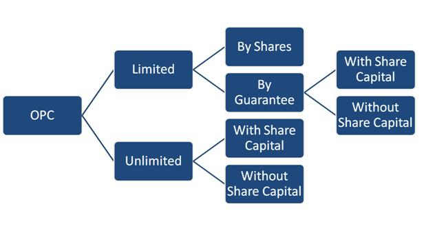 application for incorporation without share capital