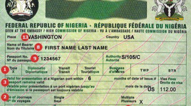 brazil visa application form india