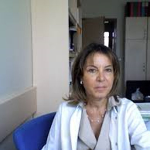 hacettepe university medical school application