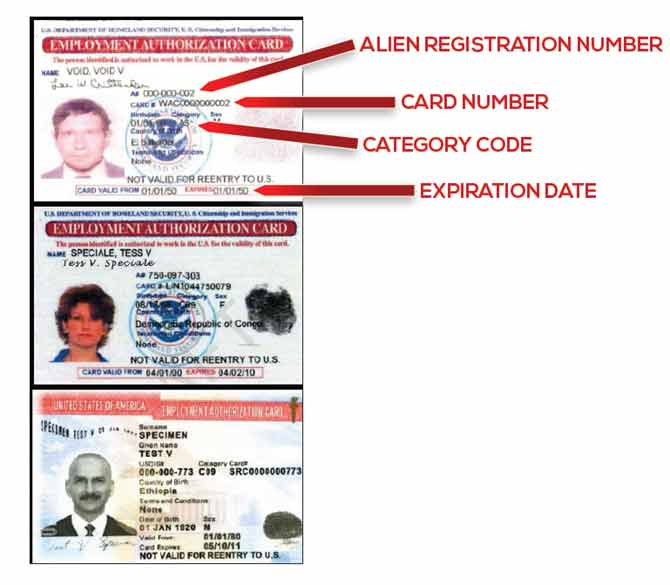 check your immigration application status online
