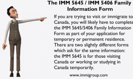 application for work permit made outside of canada imm 1295