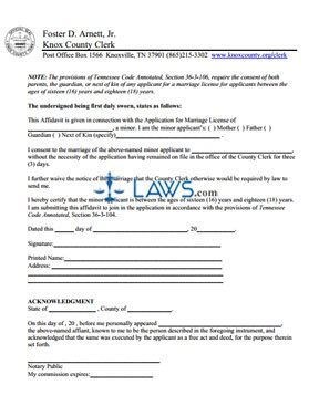 georgia marriage license application form