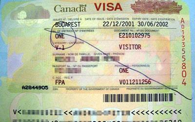 nexus application for us citizens